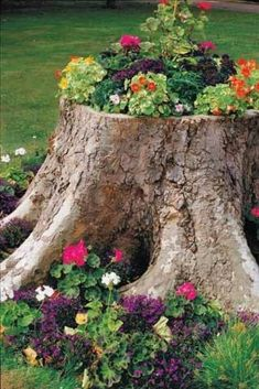 36 Front Yard Landscaping Ideas: Tree Stump Planter. Great way to add whimzy to a big stump you can't remove. Great example of working with what you have in your yard.