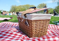 See how catered picnics are now becoming a BIG thing - complete with Frisbees, musicians and helicopter rides....