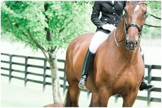 Texas Equine Photographer Karinda K Horse and Rider Portraits equina.karindak.com