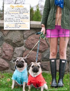 Fashionable dogs: As seen in Pawsh Magazine | The Style Desk Blog
