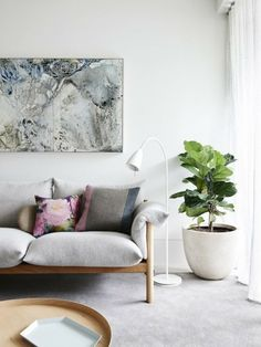 A stunning couch.. and the cabbage tree!