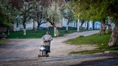 Quaint countryside in Romania - Viscri village Golf Bags, Romania, Countryside, Tours, Culture, Life