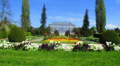 Botanischer Garten, Berlin https://murphyskiss.wordpress.com/2015/05/03/iv-vierter-stern-die-zweite-botanischer-garten-berlin-fruhling/