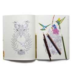 Birdtopia Coloring Book - Detroit Institute of Arts Museum Shop