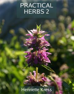 """Henriette's second herb book in English, """"Practical Herbs 2"""" is in the works and will be available in October 2013."""