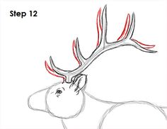 Learn how to draw an elk with this how-to video and step-by-step drawing instructions. A new animal drawing tutorial is uploaded every Tuesday. Deer Drawing Easy, Elk Drawing, Profile Drawing, Easy Drawings, Painting & Drawing, Roe Deer, Step By Step Drawing, Learn To Draw, Animal Drawings