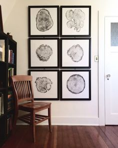 Set of 6 framed Tree Ring Prints each made by hand from a real tree. Represents trees from the Grand Canyon to Yellowstone. Each print 22x22