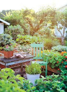With just a few changes you can turn your backyard into a beautiful oasis complete with a vegetable garden and a place to relax.