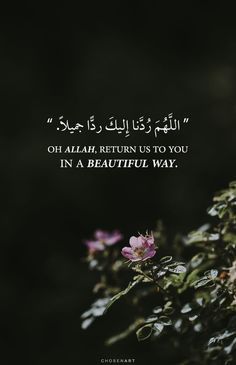 Discovered by Nader Dawah. Find images and videos about text, islam and arabic on We Heart It - the app to get lost in what you love. Quran Quotes Love, Quran Quotes Inspirational, Beautiful Islamic Quotes, Arabic Quotes, Quran Sayings, Beautiful Verses, Beautiful Pictures, Islamic Phrases, Islamic Qoutes