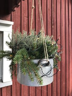 Kersttakken in emmer ophangen Christmas Garden Decorations, Plant Projects, Christmas Feeling, Fall Decor, Holiday Decor, Garden Boxes, Diy Planters, Winter Garden, Holidays And Events