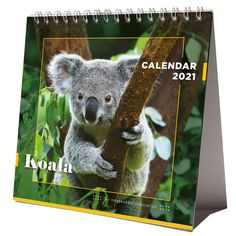 Koala 2021 Desktop Calendar NEW With Christmas Card Happy New Year 2021 IMPORTANT INFORMATION REGARDING COVID-19 PHOTO GALLERY  | PBS.TWIMG.COM  #EDUCRATSWEB 2020-05-23 pbs.twimg.com https://pbs.twimg.com/media/EYhCyNyWkAIN-HW?format=jpg&name=small