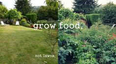 What are you doing with your lawn? Why is it so important to you? Grow food!
