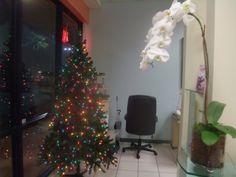 Christmas lights at Brilliant Nails & Spa ! #elegant, #nice, #music,