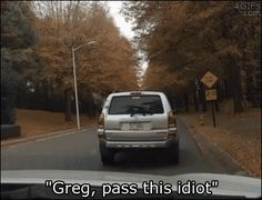 dog-driving-a-swerving-car-dr-heckle-funny-wtf-gifs
