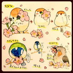 らくがきスケッチ:桜の蜜は鳥たちの大好物!お花見しながら鳥のお食事風景を観察するのも楽しいですよ。