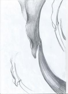 Sketch_Kelp11