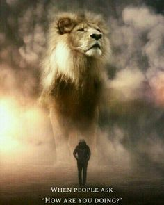 Artist Imagines a World Populated By Gigantic Animals Surreal Photos) is part of Giant animals - Artist Imagines a World Populated By Gigantic Animals Surreal Photos) World's largest collection of cat memes and other animals Lion Images, Lion Pictures, Animal Pictures, Lion Wallpaper, Animal Wallpaper, Giant Animals, Cute Animals, Wild Animals, Stuffed Animals