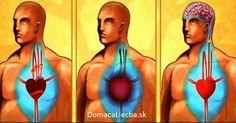 citrón a cesnak. Vyčistite artérie a predíďte infarktu a mŕtvici s jediným pohárikom tohto mocného nápoja