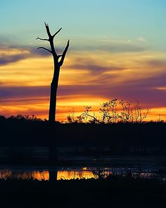 autumn skies over texas | Flickr - Photo Sharing!