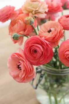 Ranunculus. Because peonies are overrated.