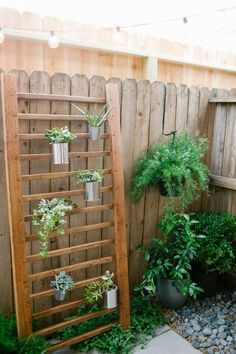 Best DIY Projects: DIY // Outdoor Succulent Wall Accent
