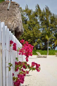 Cheeca Lodge & Spa-Florida Keys