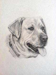 Custom Dog PortraitLabrador Retriever drawing by PatouPetPortraits