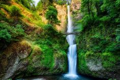 The Columbia River Gorge has tons of amazing hiking trails and waterfalls to explore, including the famous Multnomah Falls, photographed above.