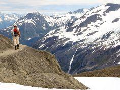 Seward Exit Glacier Harding Icefield Trail ,Alaska, PleinAirEnVR
