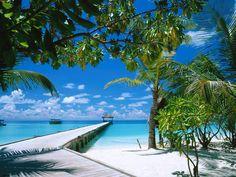 wallpaper | Wallpaper met de pier op een tropisch eiland