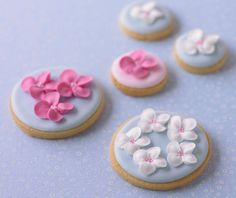 Buy the De Agostini collections online and find out more about our De Agostini products Cupcakes, Cupcake Cookies, Blossom Cookies, Flower Cookies, Fancy Cookies, Iced Cookies, Sugar Cookies, Biscuit Wedding Favours, Wedding Cookies