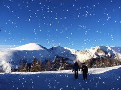 Let it snow, let it snow, let it snow Let It Snow, Let It Be, Mount Rainier, Mount Everest, Mountains, Nature, Travel, Ski, Voyage