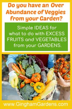Stop by Gingham Gardens and get the best tips and ideas for what to do with excess vegetables from your garden. #foodpreservation #plantedtomanyveggies Vegetable Garden For Beginners, Gardening For Beginners, Gardening Tips, Freezing Vegetables, Fruits And Vegetables, Fall Arts And Crafts, Garden Maintenance, Apple Butter, Garden Pests