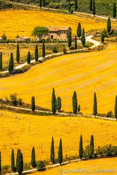 Landscape in Val d'Orcia (Tuscany) by Claudio Colombo