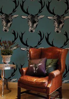 #animals #wallpaper #unique
