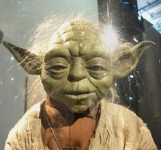 """""""Death is a natural part of life. Rejoice for those around you who transform into the Force. Mourn them do not. Miss them do not. Attachment leads to jealousy. The shadow of greed that is. Train yourself to let go of everything you fear to lose."""" >> Yoda"""