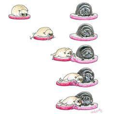 Snuggle puggies