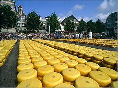 Alkmaar