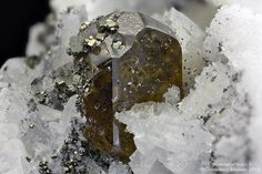 Sphalerite Lengenbach Quarry, Fäld, Binn Valley, Wallis, Switzerland 7.08 mm Sphalerite crystal with Pyrite. Collection & Photo Matteo Chinellato