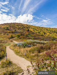 Hike the Art Loeb Trail through the Shining Rock Wilderness in North Carolina North Carolina Hiking, Visit North Carolina, Oh The Places You'll Go, Cool Places To Visit, Dupont State Forest, Camping In Pennsylvania, Summit View, Visit Nc, Great American Road Trip