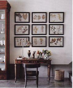 Framed herbiers