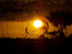 Sunset Riacho Fundo