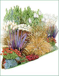 -  THE DESIGN PROCESS  THE FIRST STEP       Client interview and site survey and analysis followed by the drawing up of a preliminary design.                    THE MASTER PLAN  On approval of the preliminary design a working scaled master plan is produced detailing hard landscaping materials and specification.      PLANTING PLAN