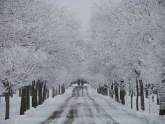 Winter in St. Cloud, MN