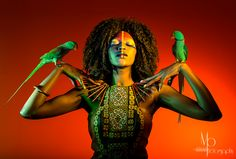 'African Queen'  This shot features the Beautiful Mary Elizabeth Williams and two gorgeous alexandria parrots. I loved playing with the gels in this shot!  #moanabarrosophotograpya #benaustindesigns #model #african queen #birds #parrots #makeup #designerdress #studio #afro #red #colours #organic #photography #fashion #beauty #gels #love