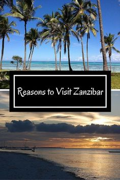 Here my reasons to visit Zanzibar. SO much to see, so little time. Sigh!