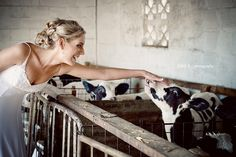 Wedding on a dairy farm!!  I would Love to do this!!