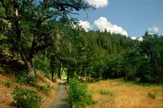 Cathedral Hills Park in Grants Pass. William Sullivan says it's great hiking place, especially in April and May. Start at the trailhead 50' past outhouse, then turn right, following the Outback Loop in a counter-clockwise fashion. Its a 4 mile loop.    Maybe we should meet Sarah and Stephen here?    http://www.registerguard.com/web/sportsoutdoors/27772104-41/creek-loop-trail-grants-pass.html.csp