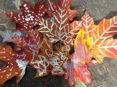 Painted Autumn Leaves and 9 More Fun Fall Crafts by Karla Anderson