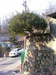 130324 서울시 종로구 부암동 43-4